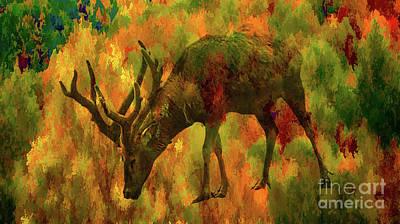 Camouflage Deer Poster