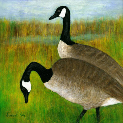 Canada Geese Grazing  Poster by Jeanne Kay Juhos