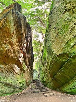 Poster featuring the photograph Cantwell Cliffs Trail Hocking Hills Ohio by Lisa Wooten