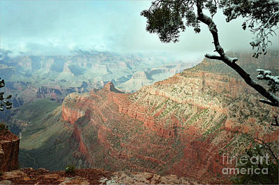 Canyon Captivation Poster