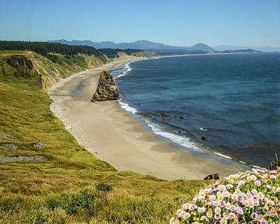Cape Blanco On The Oregon Coast By Michael Tidwell Poster
