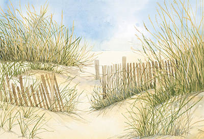 Cape Cod Dunes And Fence Poster by Virginia McLaren