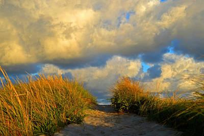 Cape Cod Sand Dunes Poster by Dianne Cowen