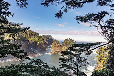 Cape Flattery Along The Pacific Coast In Washington Poster