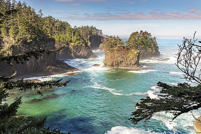 Cape Flattery In The Pacific Northwest Washington Poster