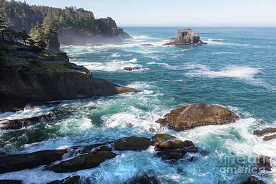 Cape Flattery On The Olympic Peninsula In Washington Poster