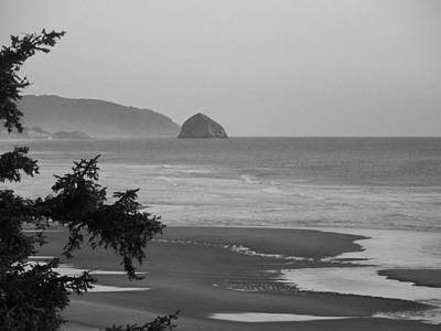 Poster featuring the photograph Cape Kiwanda by Angi Parks