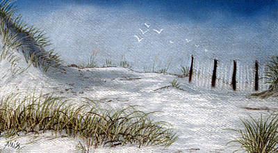 Poster featuring the pastel Cape San Blas Evening by Jan Amiss