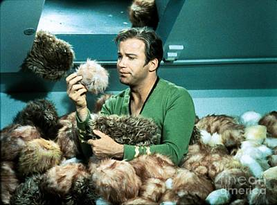 Captain Kirk Up To His Chest In Tribbles Poster