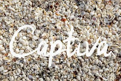 Captiva Island Seashell Poster