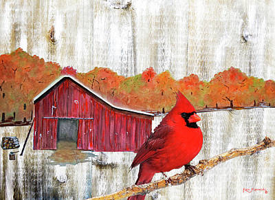Cardinal By The Barn Poster by Ken Figurski