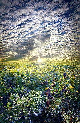 Cares Away Poster by Phil Koch
