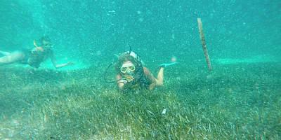 Caribbean Diving Poster
