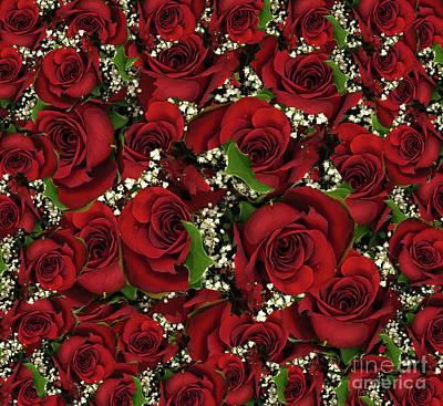 Carmine Roses Poster