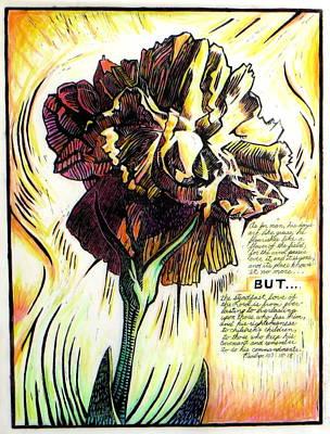 Carnation Poster by Daniel Jimick