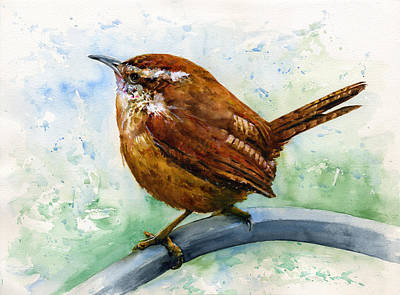 Carolina Wren Large Poster