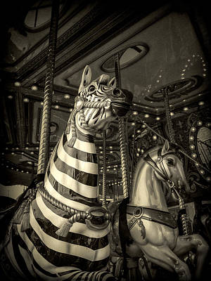Poster featuring the photograph Carousel Zebra by Caitlyn Grasso