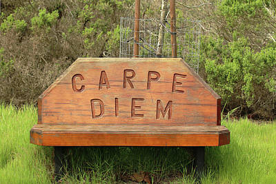 Poster featuring the photograph Carpe Diem Bench by Art Block Collections