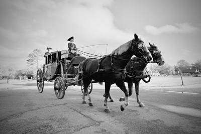 Carriage Ride In Williamsburg Poster by Rachel Morrison