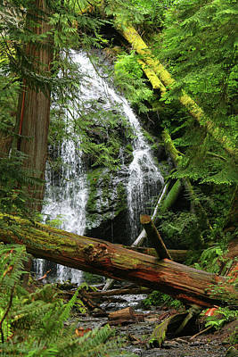 Cascade Falls - Orcas Island Poster by Art Block Collections