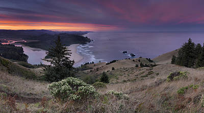 Cascade Head Scenic Area Poster by Leland D Howard