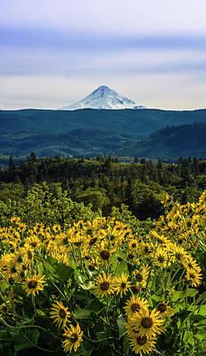 Cascade Spring Poster