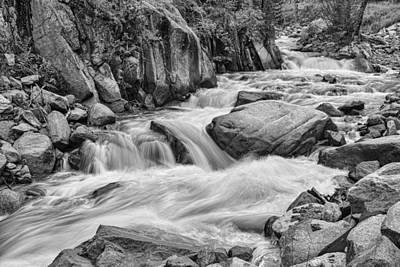Cascading Colorado Rocky Mountain Stream Bw Poster