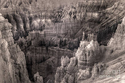 Castles Made Of Sand In The Hoodoos  Poster by William Fields