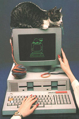 Cat And Computer Poster by Funky Dispatch Enterprises
