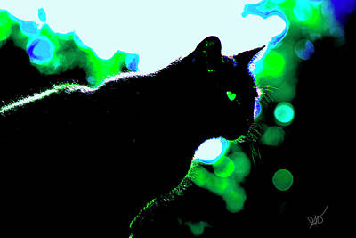 Cat Bathed In Green Light Poster by Gina O'Brien