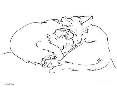 Cat Drawings 2 Poster
