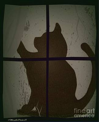 Cat In The  Twilight  Poster