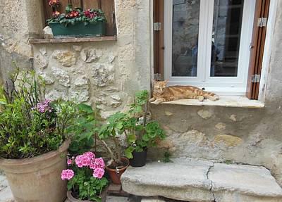 Cat Relaxing In St Paul De Vence Poster