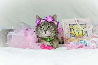 Cat Tea Party Poster