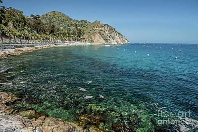 Catalina Bay Poster by Jim Chamberlain
