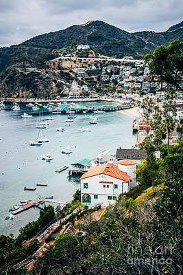 Catalina Island Avalon Bay From Above Picture Poster by Paul Velgos