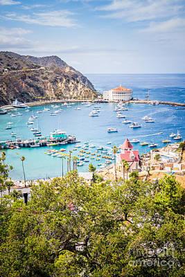 Catalina Island Avalon Bay Vertical Photo Poster