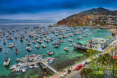 Catalina Island  Avalon Harbor Poster by David Zanzinger
