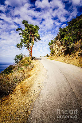 Catalina Island Wrigley Road In The Mountains Poster by Paul Velgos