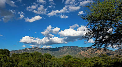 Poster featuring the photograph Catalina Mountains H48 by Mark Myhaver
