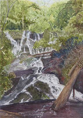 Poster featuring the painting Catawba Falls - Working Notes by Joel Deutsch