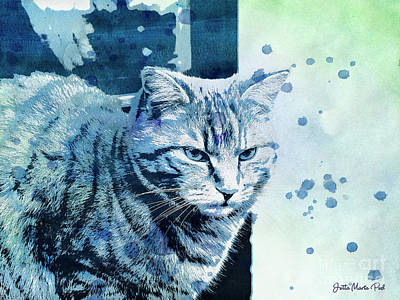Catbird Seat Poster