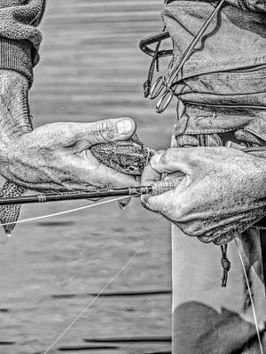 Catch And Release Rainbow Trout Monochrome Poster by Jennie Marie Schell