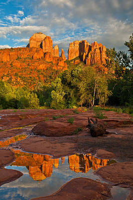 Cathedral Rock Reflection Poster by Guy Schmickle
