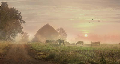 Cattle In The Mist Poster