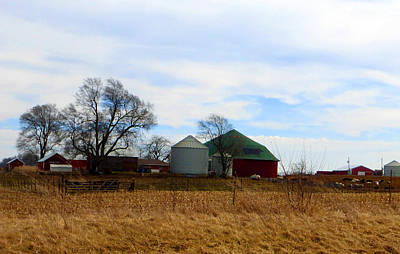 Cattle Round Barn Poster by Tina M Wenger