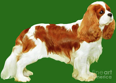 Poster featuring the painting Cavalier King Charles Spaniel by Marian Cates