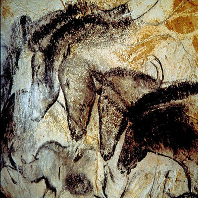 Cave Painting 4 Poster