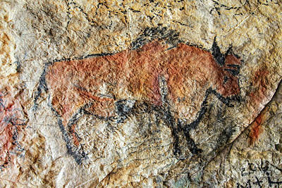 Cave Painting In Prehistoric Style Poster by Michal Boubin