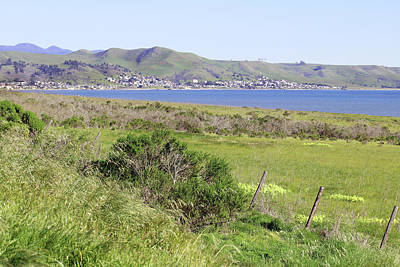 Poster featuring the photograph Cayucos Coastline - California by Art Block Collections